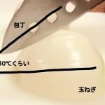 玉ねぎのみじん切りの「涙」「辛い」は科学的な切り方で解決!切り方ひとつで味が変わる
