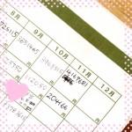 ズボラ節約主婦の2015年11月の家計簿・やりくり結果