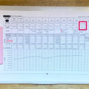 毎月5分!hanaの貯金簿2017年11月の結果と赤字の分析方法