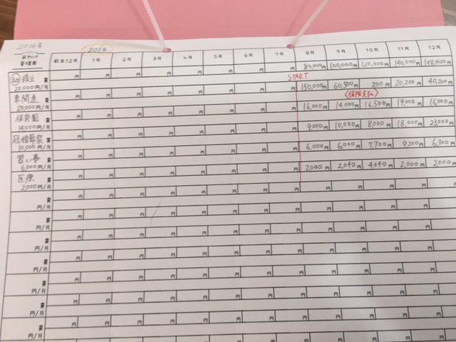 2017年質問者さんの袋わけ家計簿管理シート
