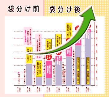 hana式家計簿の実績
